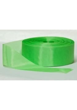 Лента Шёлк 5см (зелёный светлый)
